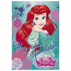 Notebook A7 Princess