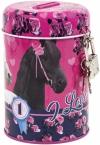 Saving box with padlock | Horses 14